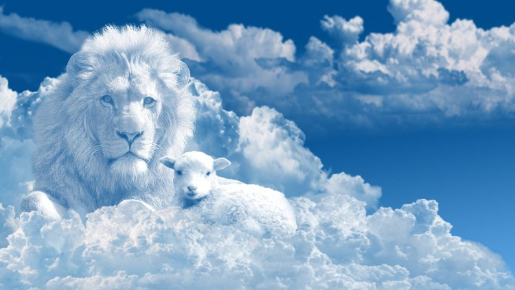 Lion and Lamb in Cloud